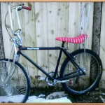 Gunnison Townie Bicycle